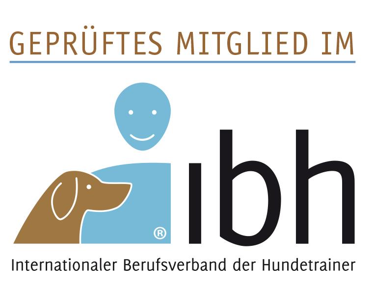 Hunderaining, Verhaltensberatung für Hunde, Hundeschule, Großraum Mönchengladbahc, Maria Curtis